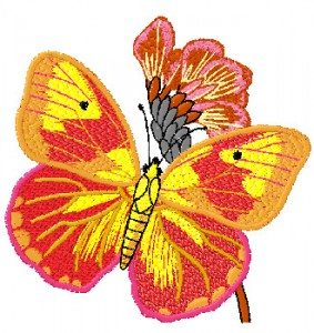 embroidery.ir-4X4-butterfly-embroidery-design