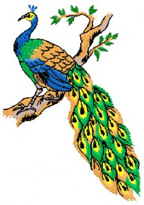 embroidery.ir-4X4-peacock-embroidery-design
